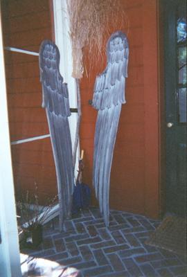 Wingsfor Web